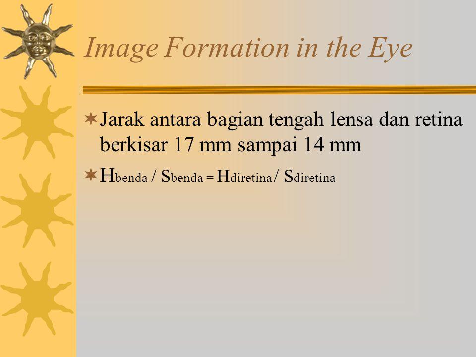 Image Formation in the Eye  Jarak antara bagian tengah lensa dan retina berkisar 17 mm sampai 14 mm  H benda / S benda = H diretina / S diretina