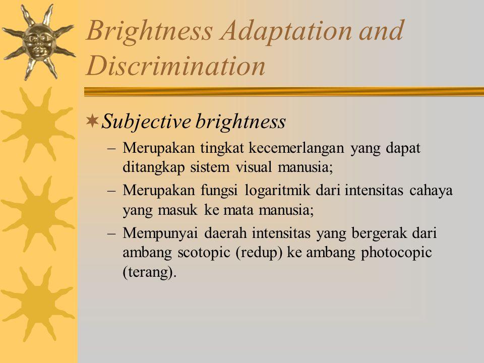 Brightness Adaptation and Discrimination (Cont.)  Brightness adaption –Merupakan fenomena penyesuaian mata manusia dalam membedakan gradasi tingkat kecemerlangan; –Batas daerah tingkat kecemerlangan yang mampu dibedakan secara sekaligus oleh mata manusia lebih kecil dibandingkan dengan daerah tingkat kecemerlangan sebenarnya.