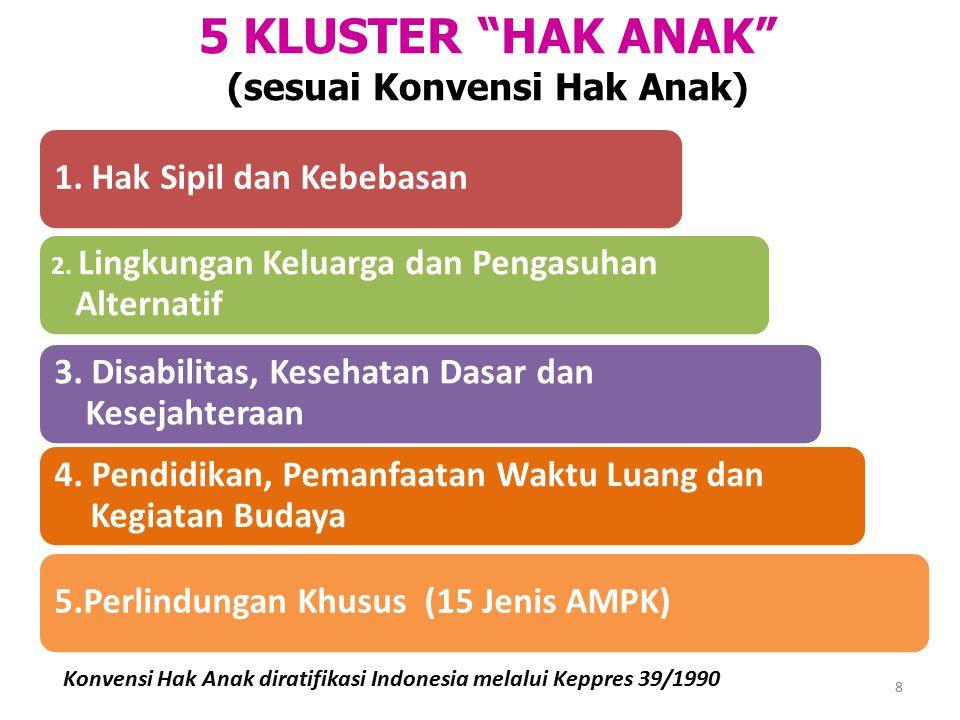 1. Hak Sipil dan Kebebasan 2. Lingkungan Keluarga dan Pengasuhan Alternatif 3. Disabilitas, Kesehatan Dasar dan Kesejahteraan 4. Pendidikan, Pemanfaat