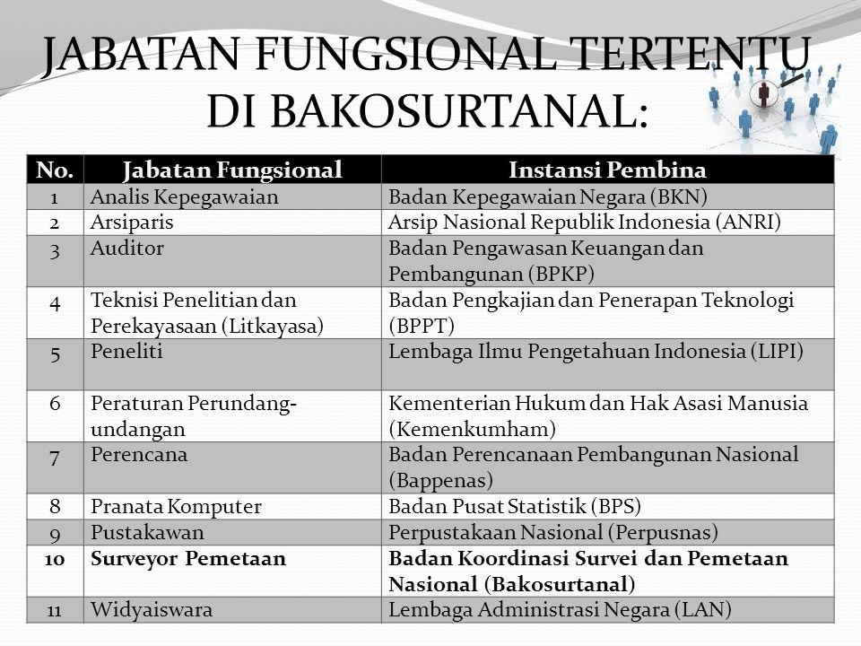 Jabatan Fungsional Tertentu adalah kedudukan yang menunjukkan tugas, tanggung jawab, wewenang, dan hak seseorang Pegawai Negeri Sipil dalam suatu satu