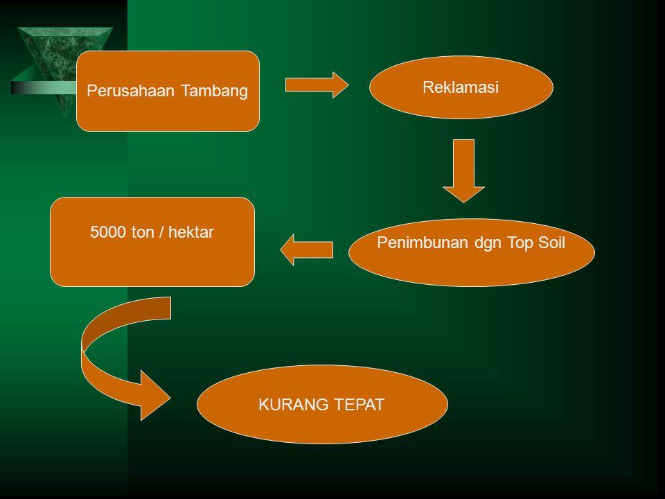 Reklamasi Perusahaan Tambang Penimbunan dgn Top Soil 5000 ton / hektar KURANG TEPAT