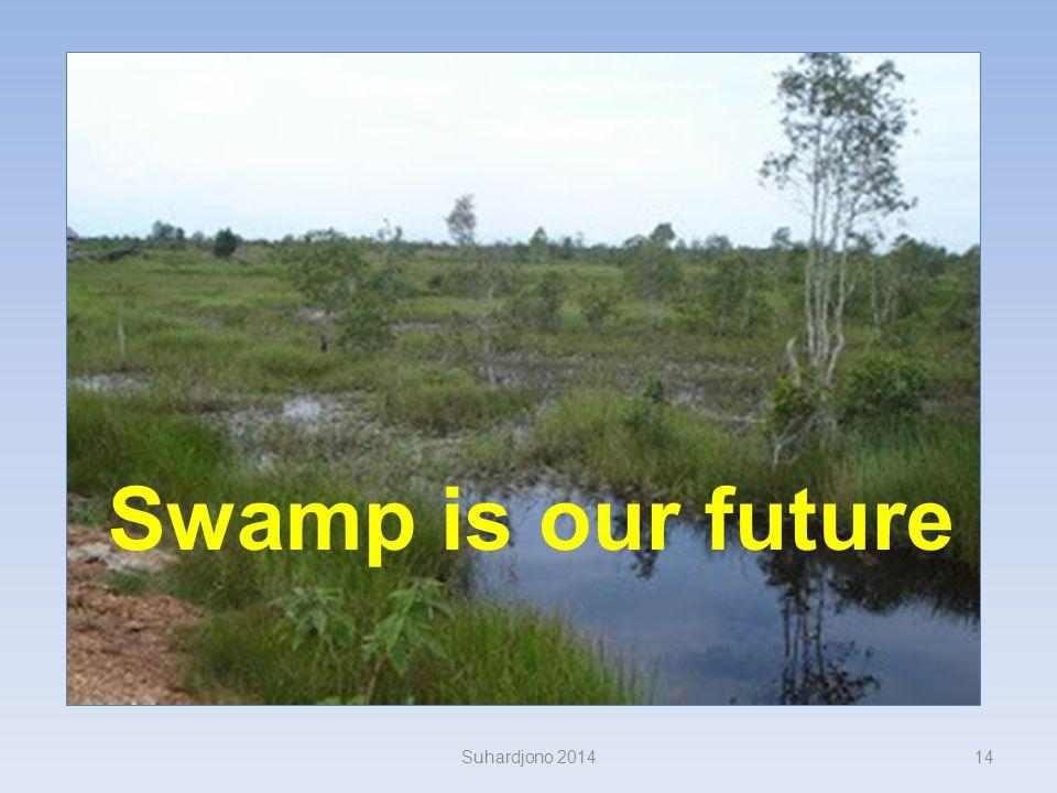 Hilangnya fungsi tampungan, memperbesar aliran permukaan Aliran sungai melambat, laju sedimentasi muara meningkat Peninggian muka air Suhardjono 20141