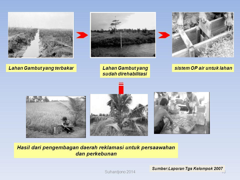 Reklamasi untuk lahan pertanian Persawahan dan perkebunan Suhardjono 201417