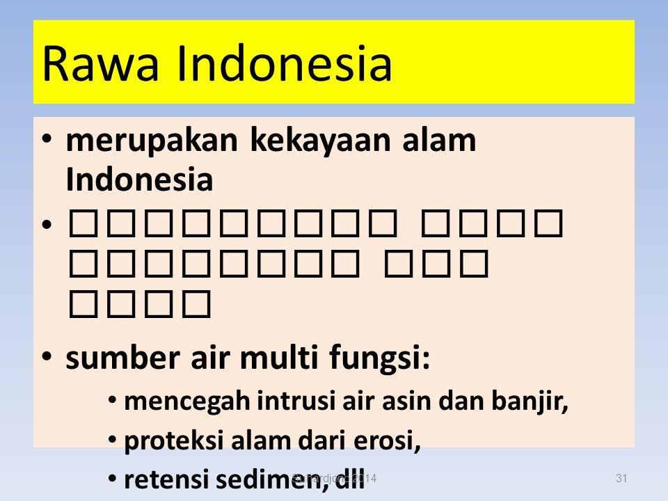 Suhardjono 201430 Rawa Indonesia lebak dan pasang surut
