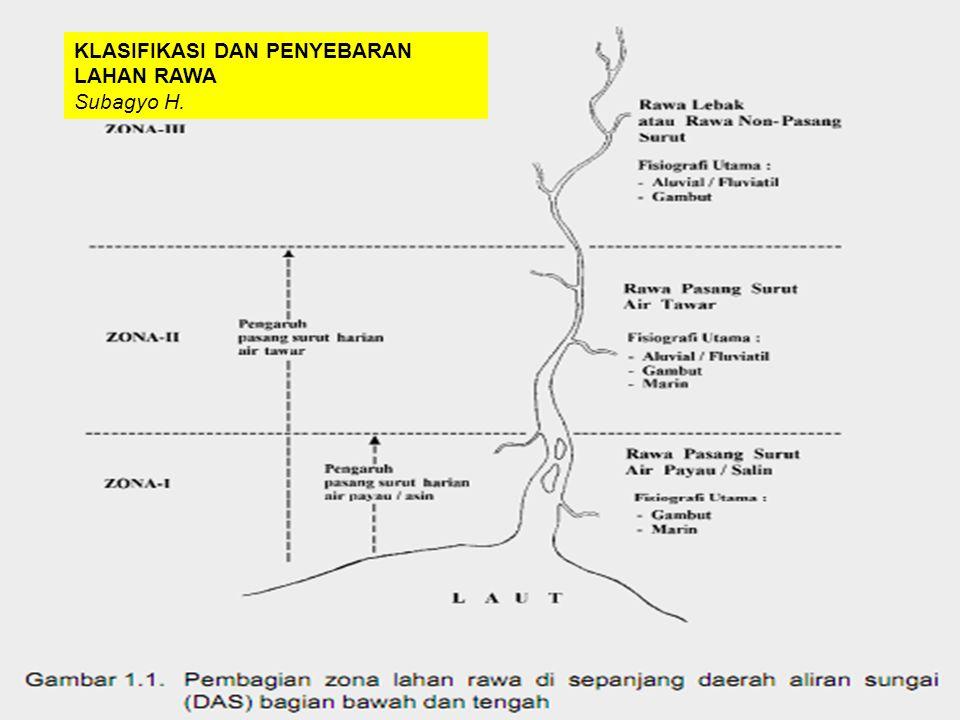 Rawa Indonesia merupakan kekayaan alam Indonesia ekosistem yang kompleks dan unik sumber air multi fungsi: mencegah intrusi air asin dan banjir, prote