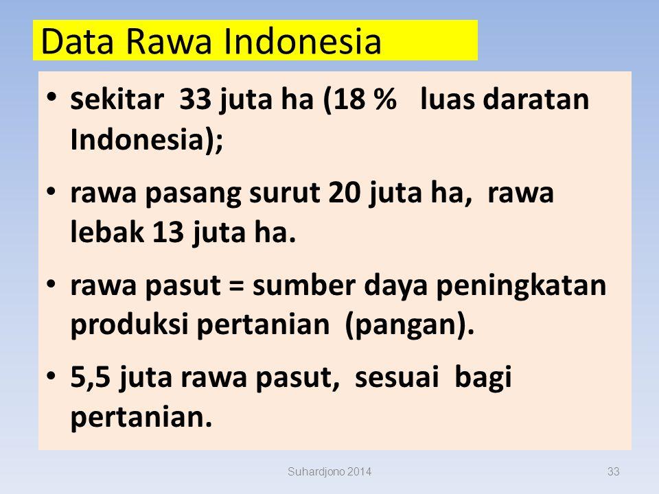 KLASIFIKASI DAN PENYEBARAN LAHAN RAWA Subagyo H.