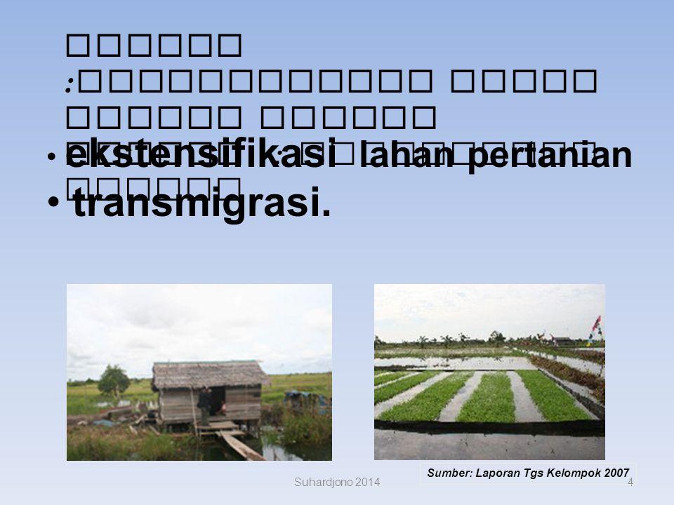 3 Reklamasi rawa pasut dan rawa lebak untuk persawahan Reklamasi lahan bekas tambang dan industri Reklamasi daerah pantai untuk industri, pemukiman, p
