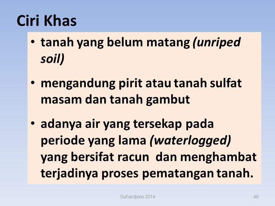 Suhardjono 2014 Rawa Pasang Surut 45
