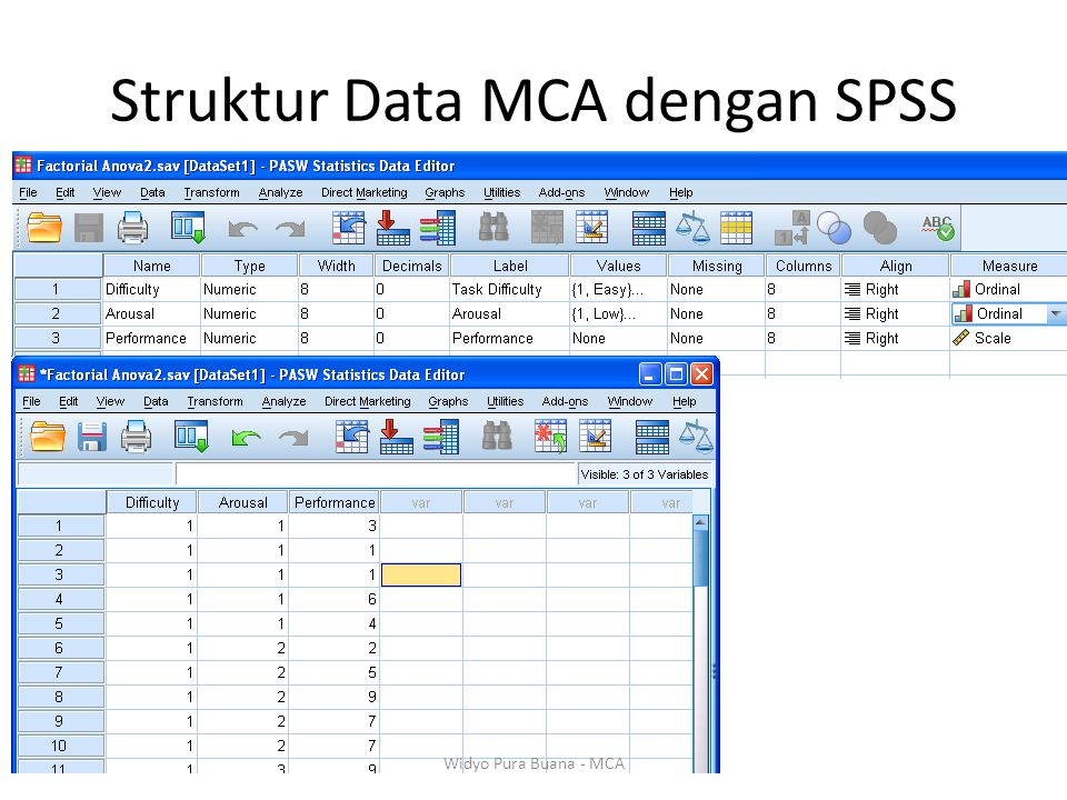 Struktur Data MCA dengan SPSS Widyo Pura Buana - MCA