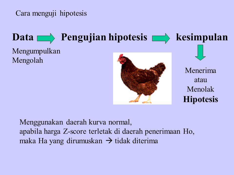 Cara menguji hipotesis Mengumpulkan Mengolah DataPengujian hipotesiskesimpulan Menerima atau Menolak Hipotesis Menggunakan daerah kurva normal, apabil