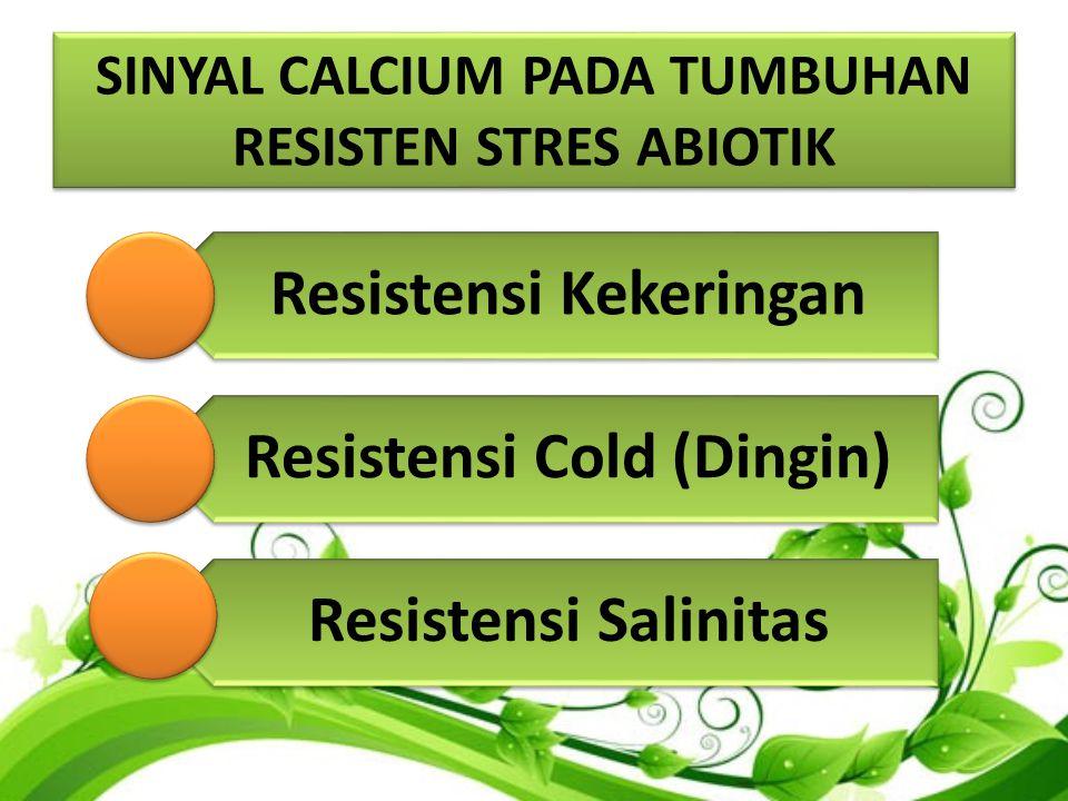 SINYAL CALCIUM PADA TUMBUHAN RESISTEN STRES ABIOTIK Resistensi Kekeringan Resistensi Cold (Dingin) Resistensi Salinitas