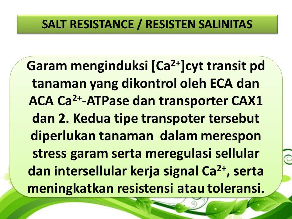 Garam menginduksi [Ca 2+ ]cyt transit pd tanaman yang dikontrol oleh ECA dan ACA Ca 2+ -ATPase dan transporter CAX1 dan 2.