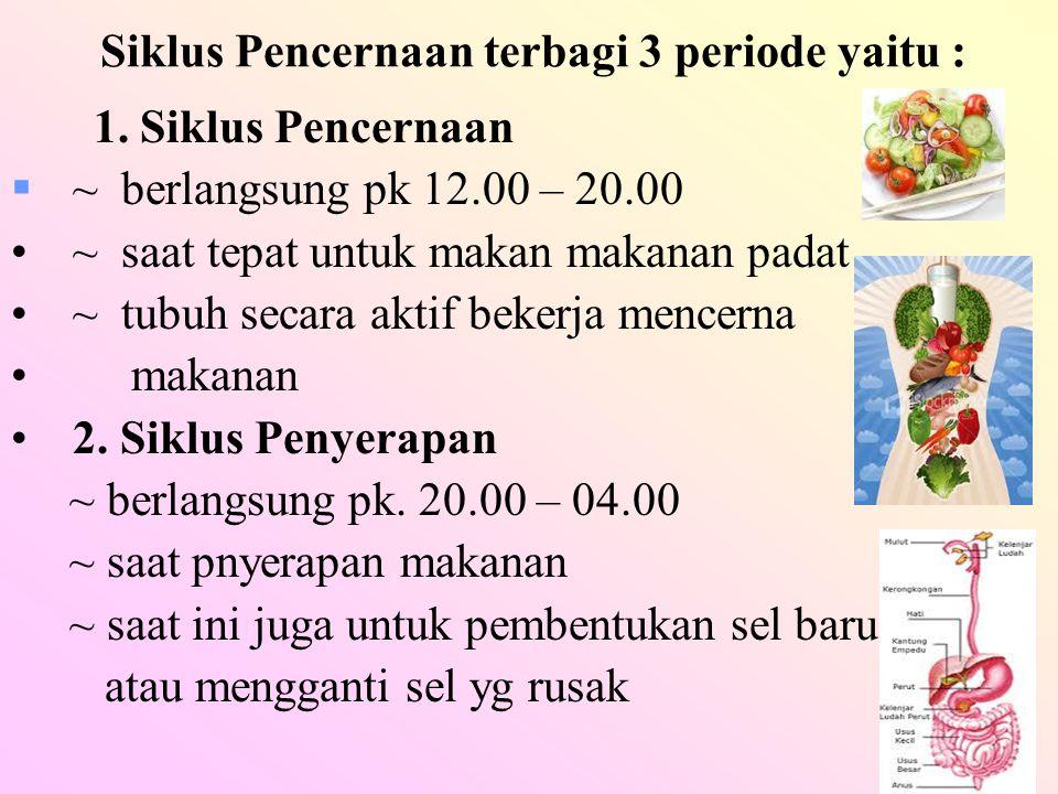 Siklus Pencernaan terbagi 3 periode yaitu : 1. Siklus Pencernaan  ~ berlangsung pk 12.00 – 20.00 ~ saat tepat untuk makan makanan padat ~ tubuh secar
