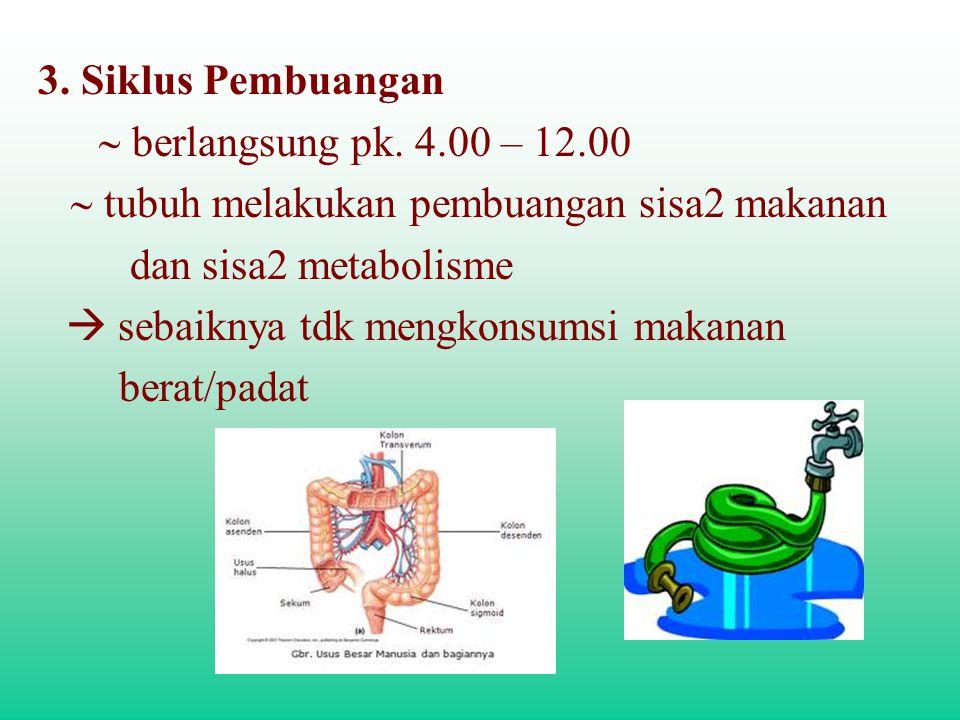 3. Siklus Pembuangan  berlangsung pk. 4.00 – 12.00  tubuh melakukan pembuangan sisa2 makanan dan sisa2 metabolisme  sebaiknya t