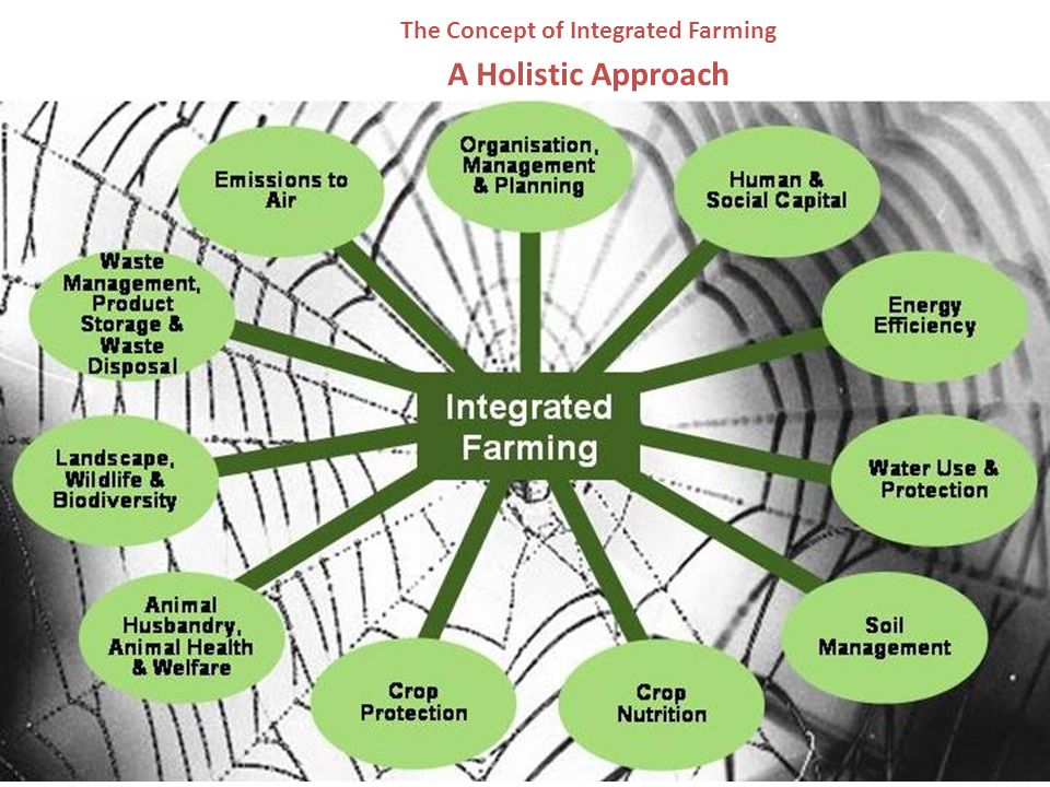 The Concept of Integrated Farming A Holistic Approach