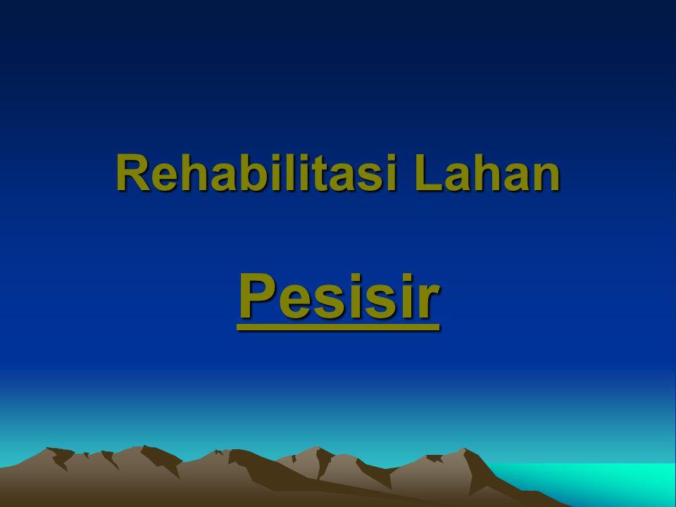 Rehabilitasi Lahan Pesisir