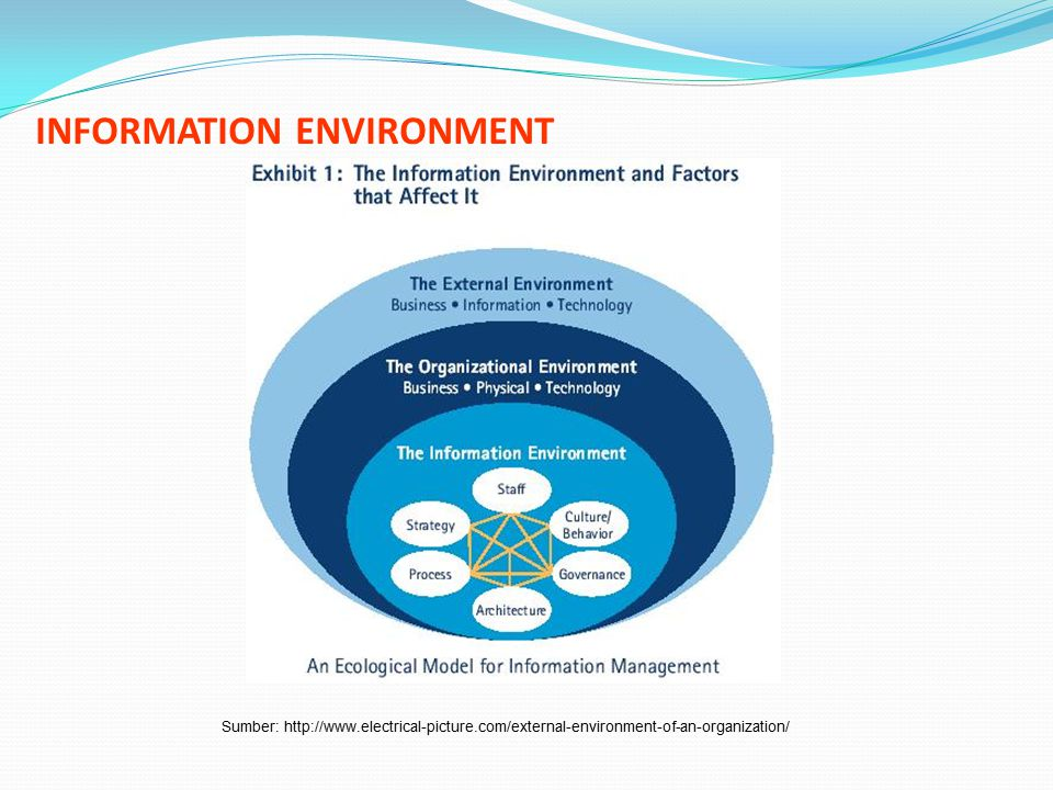 INFORMATION ENVIRONMENT Sumber: http://www.electrical-picture.com/external-environment-of-an-organization/