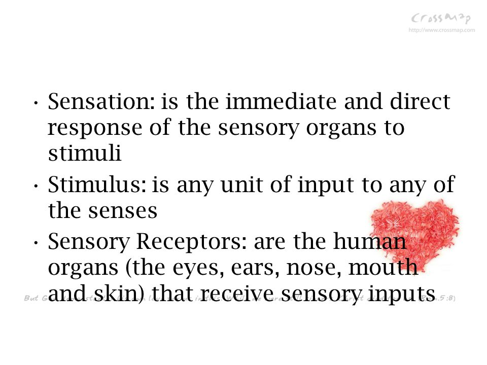 Sensation: is the immediate and direct response of the sensory organs to stimuli Stimulus: is any unit of input to any of the senses Sensory Receptors: are the human organs (the eyes, ears, nose, mouth and skin) that receive sensory inputs