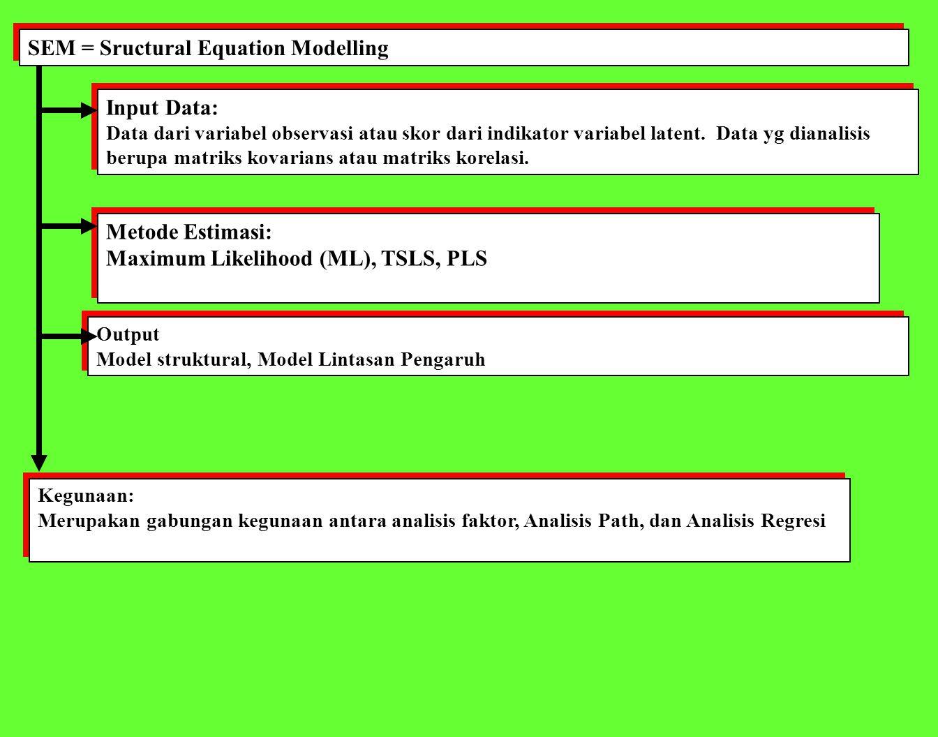 SEM = Sructural Equation Modelling Input Data: Data dari variabel observasi atau skor dari indikator variabel latent.