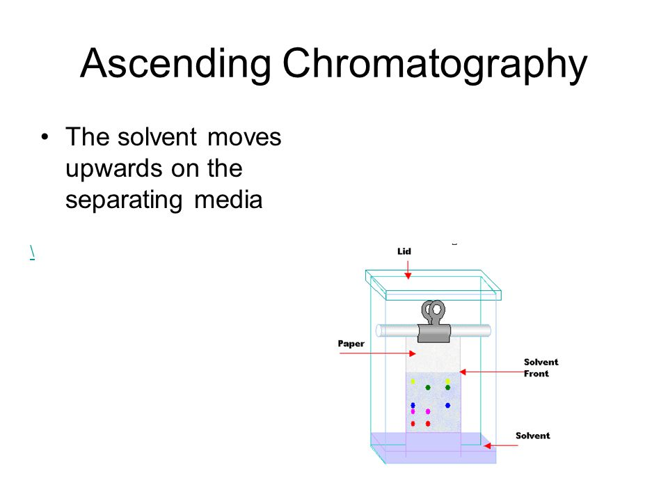 Ascending Chromatography The solvent moves upwards on the separating media \