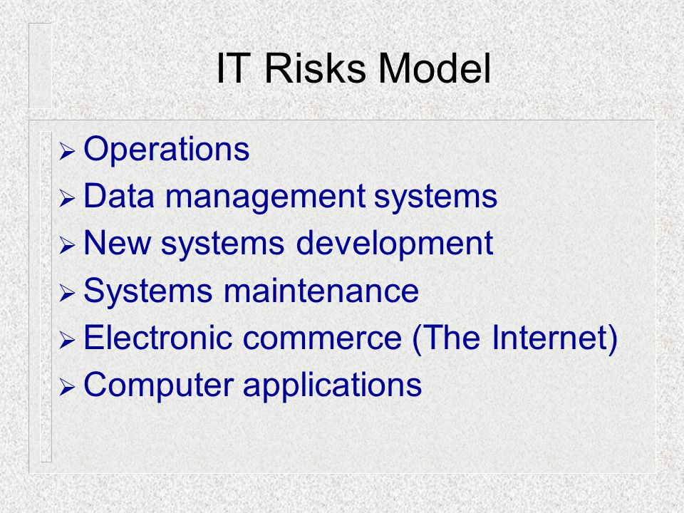  Operations  Data management systems  New systems development  Systems maintenance  Electronic commerce (The Internet)  Computer applications IT Risks Model