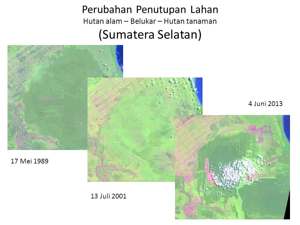 Deforestation (Change of forest cover to palm oil) 1990 1996 20132000 Hutan Hilang berganti Tanaman Perkebunan