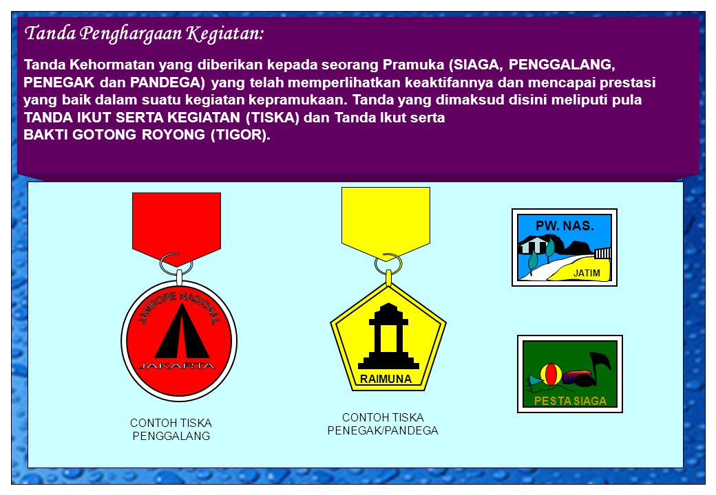 Tanda Penghargaan Kegiatan: Tanda Kehormatan yang diberikan kepada seorang Pramuka (SIAGA, PENGGALANG, PENEGAK dan PANDEGA) yang telah memperlihatkan