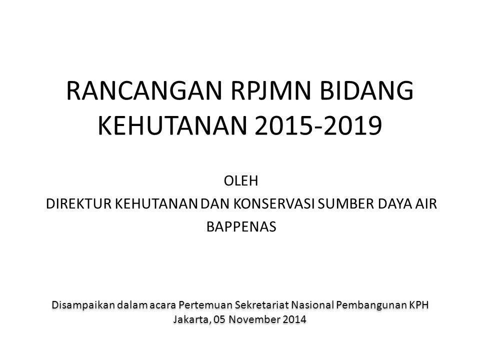 VISI DAN MISI PRESIDEN TERPILIH RANCANGAN TEKNOKRATIK RPJMN DRAFT AWAL RPJMN 2015-2019