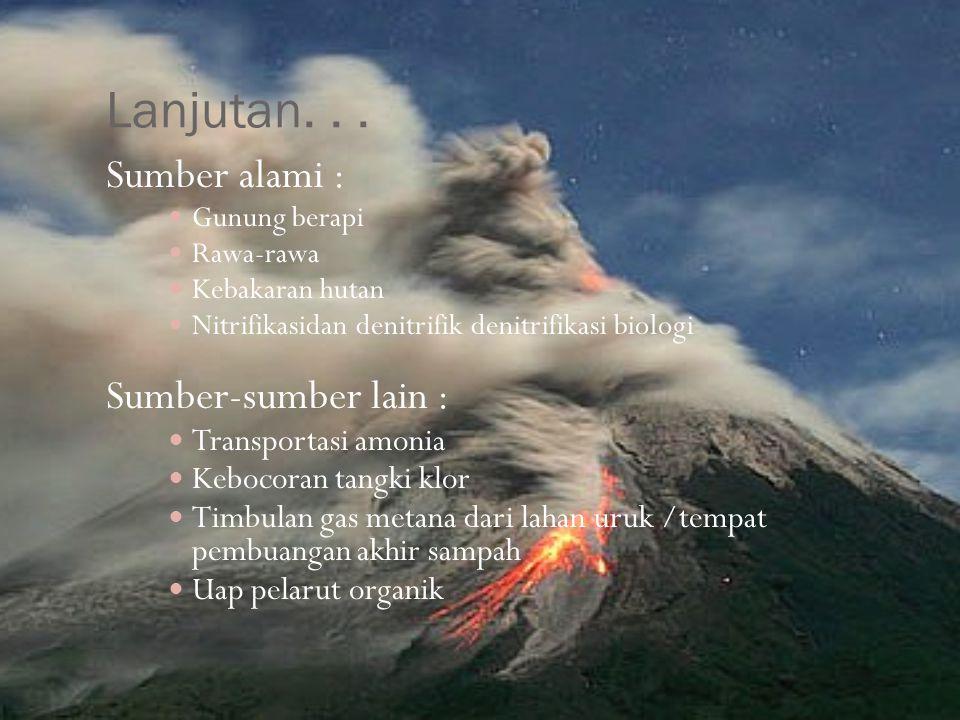Lanjutan... Sumber alami : Gunung berapi Rawa-rawa Kebakaran hutan Nitrifikasidan denitrifik denitrifikasi biologi Sumber-sumber lain : Transportasi a