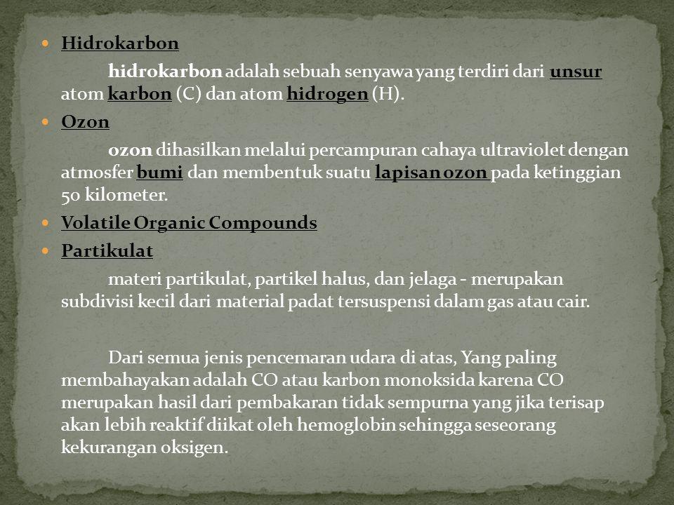 Karbon monoksida (CO 2 ) Oksida nitrogen Nitrogen oksida berasal dari proses pembakaran dan pembentukan asap kabut fito kimia. Oksida sulfur CFC Kloro