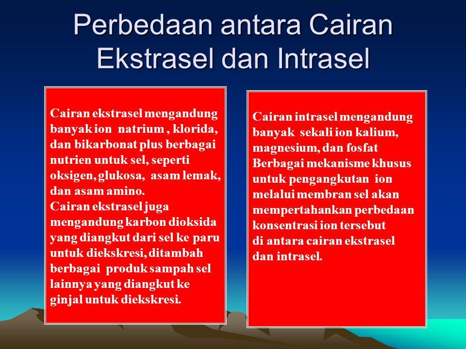 Perbedaan antara Cairan Ekstrasel dan Intrasel Cairan ekstrasel mengandung banyak ion natrium, klorida, dan bikarbonat plus berbagai nutrien untuk sel