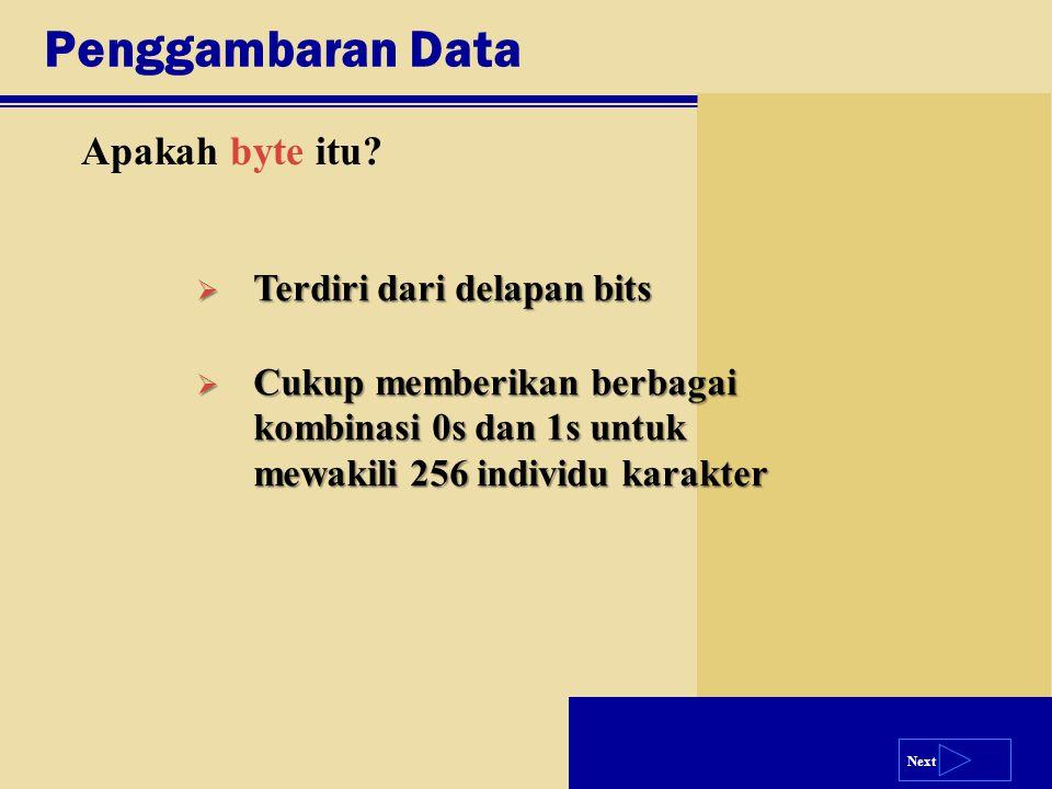 Next Penggambaran Data  Terdiri dari delapan bits  Cukup memberikan berbagai kombinasi 0s dan 1s untuk mewakili 256 individu karakter Apakah byte it