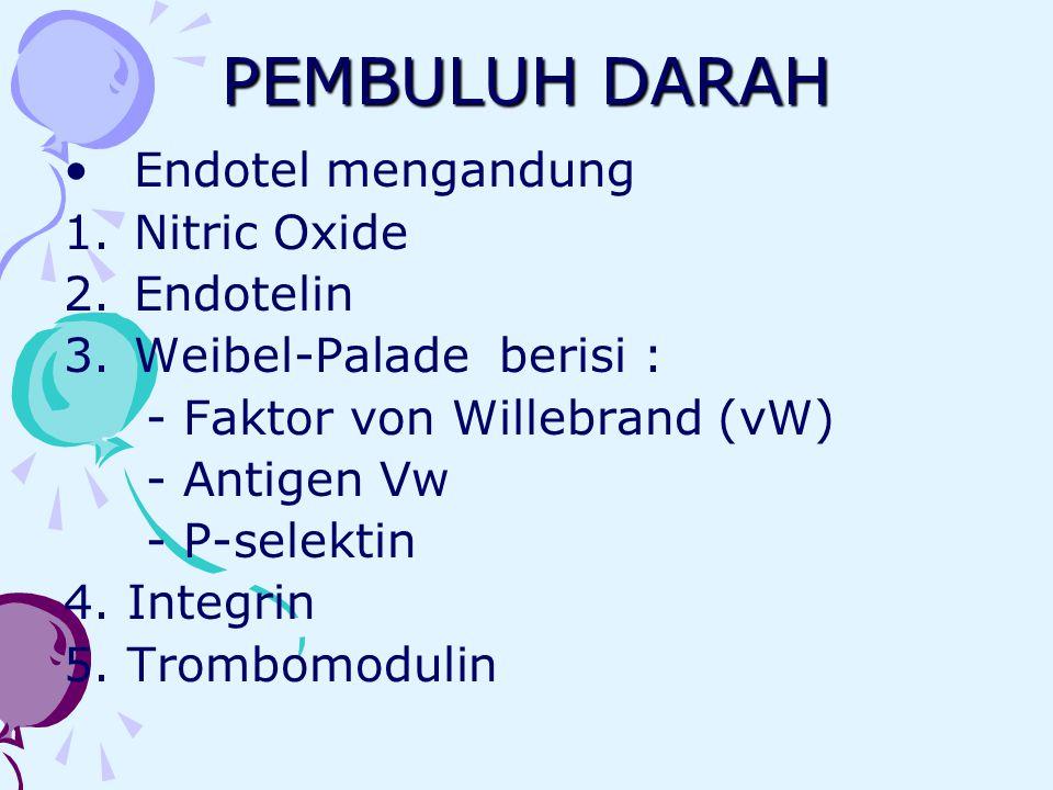 PEMBULUH DARAH Endotel mengandung 1.Nitric Oxide 2.Endotelin 3.Weibel-Palade berisi : - Faktor von Willebrand (vW) - Antigen Vw - P-selektin 4. Integr