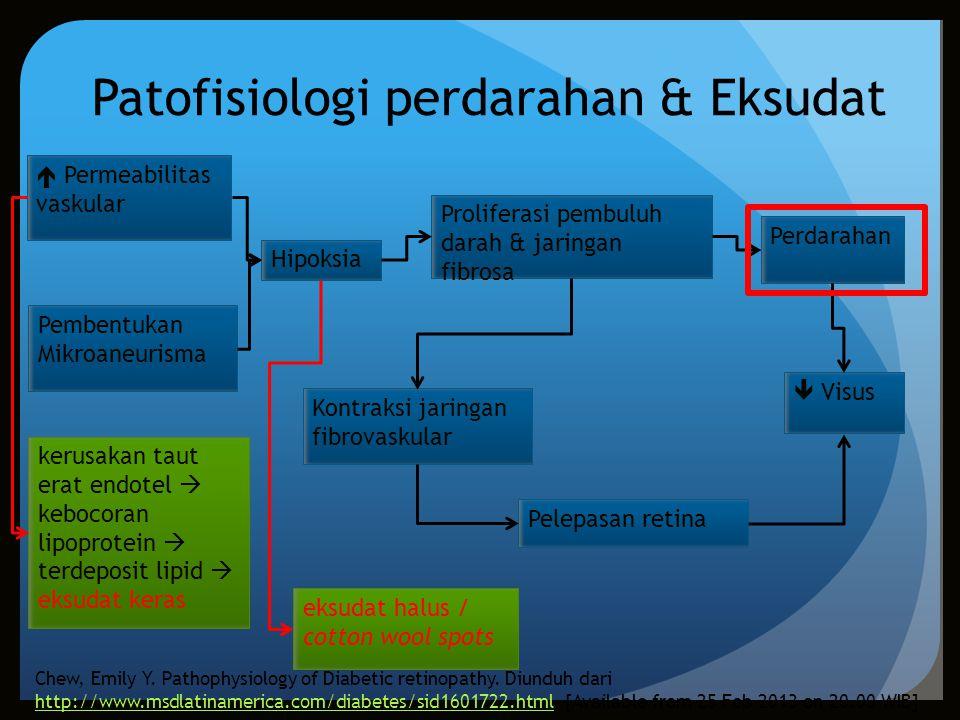 Patofisiologi perdarahan & Eksudat Pembentukan Mikroaneurisma  Permeabilitas vaskular Hipoksia Proliferasi pembuluh darah & jaringan fibrosa Perdarah