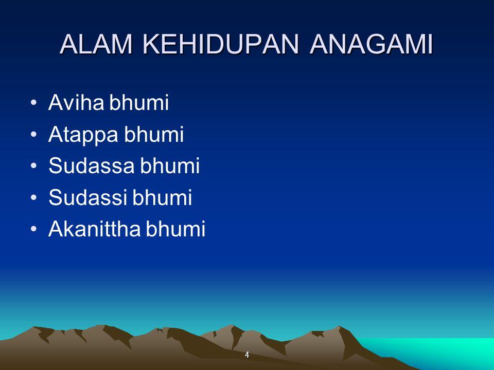 4 ALAM KEHIDUPAN ANAGAMI Aviha bhumi Atappa bhumi Sudassa bhumi Sudassi bhumi Akanittha bhumi
