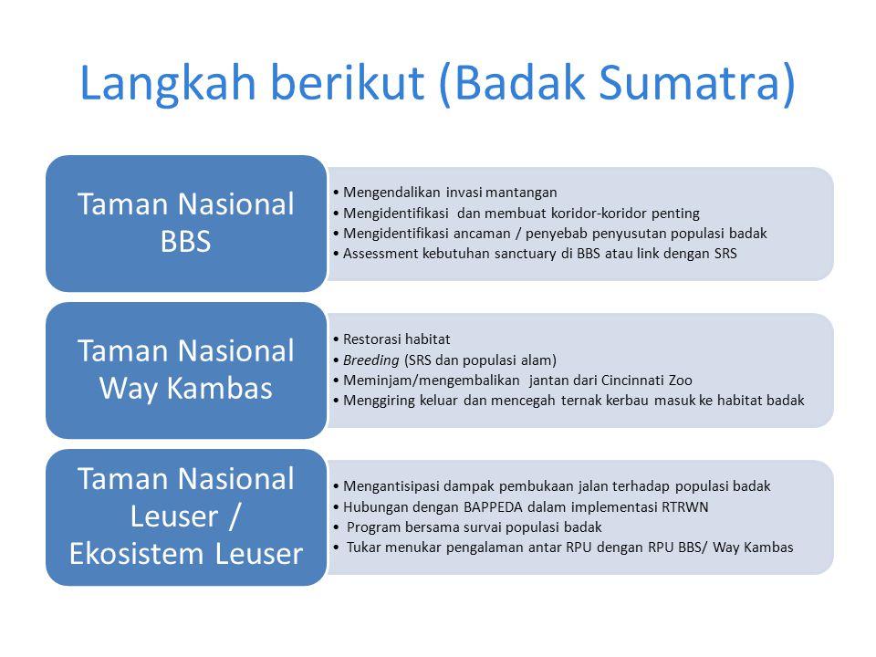 Langkah berikut (Badak Sumatra) Mengendalikan invasi mantangan Mengidentifikasi dan membuat koridor-koridor penting Mengidentifikasi ancaman / penyeba