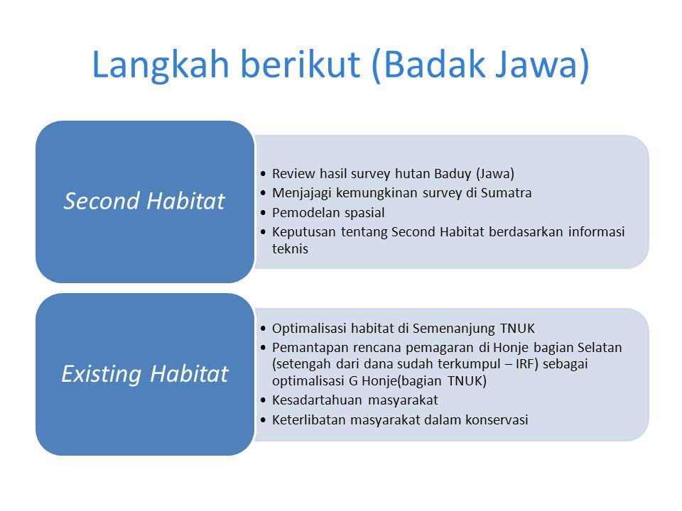 Langkah berikut (Badak Jawa) Review hasil survey hutan Baduy (Jawa) Menjajagi kemungkinan survey di Sumatra Pemodelan spasial Keputusan tentang Second
