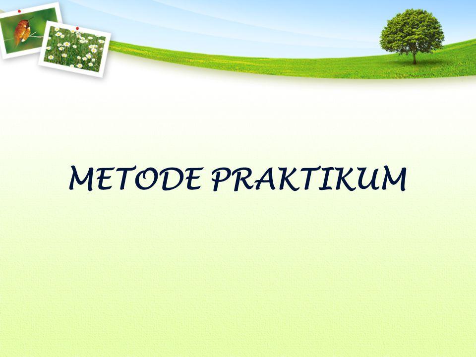 METODE PRAKTIKUM