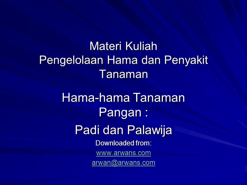 Materi Kuliah Pengelolaan Hama dan Penyakit Tanaman Hama-hama Tanaman Pangan : Padi dan Palawija Downloaded from: www.arwans.com arwan@arwans.com