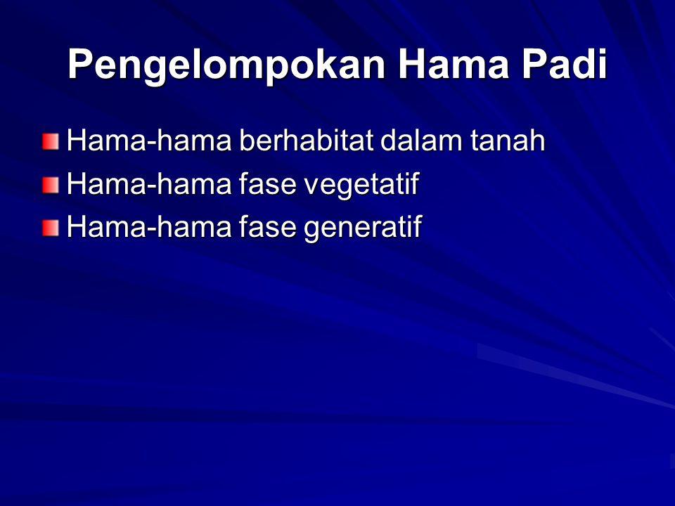 Pengelompokan Hama Padi Hama-hama berhabitat dalam tanah Hama-hama fase vegetatif Hama-hama fase generatif