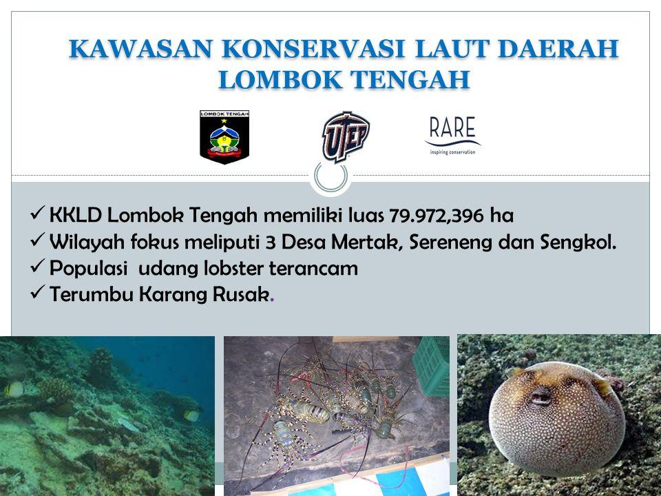 KAWASAN KONSERVASI LAUT DAERAH LOMBOK TENGAH KAWASAN KONSERVASI LAUT DAERAH LOMBOK TENGAH KKLD Lombok Tengah memiliki luas 79.972,396 ha Wilayah fokus