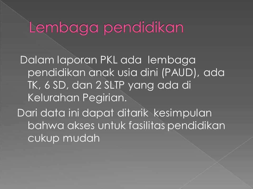 Dalam laporan PKL ada lembaga pendidikan anak usia dini (PAUD), ada TK, 6 SD, dan 2 SLTP yang ada di Kelurahan Pegirian.