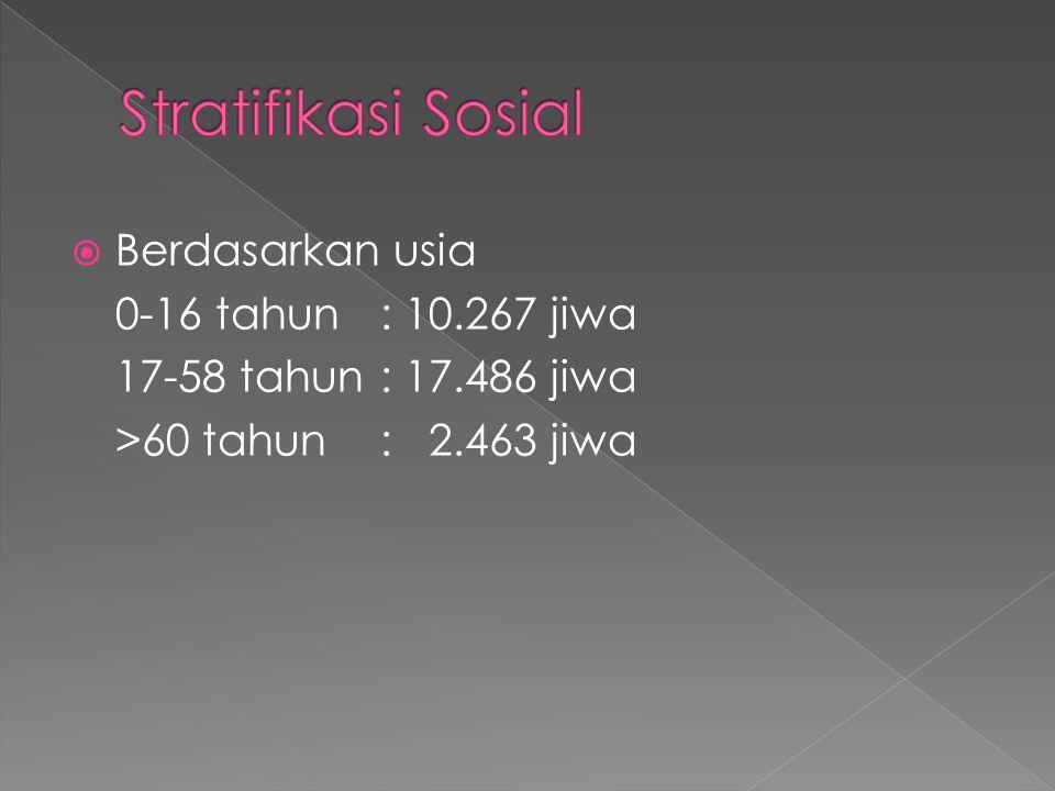  Berdasarkan usia 0-16 tahun : 10.267 jiwa 17-58 tahun: 17.486 jiwa >60 tahun : 2.463 jiwa