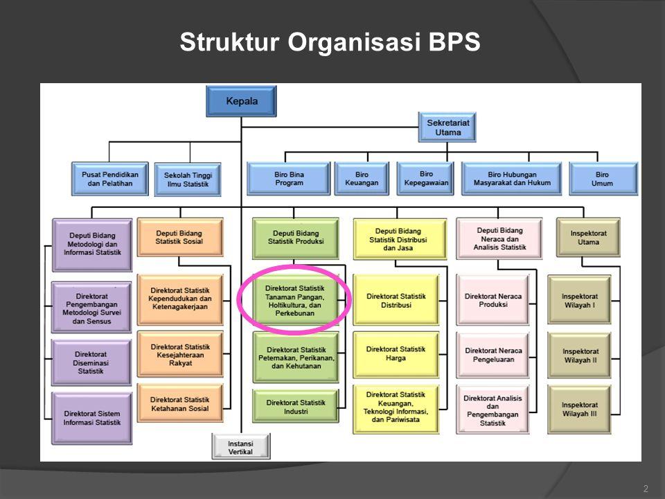 Struktur Organisasi BPS 2