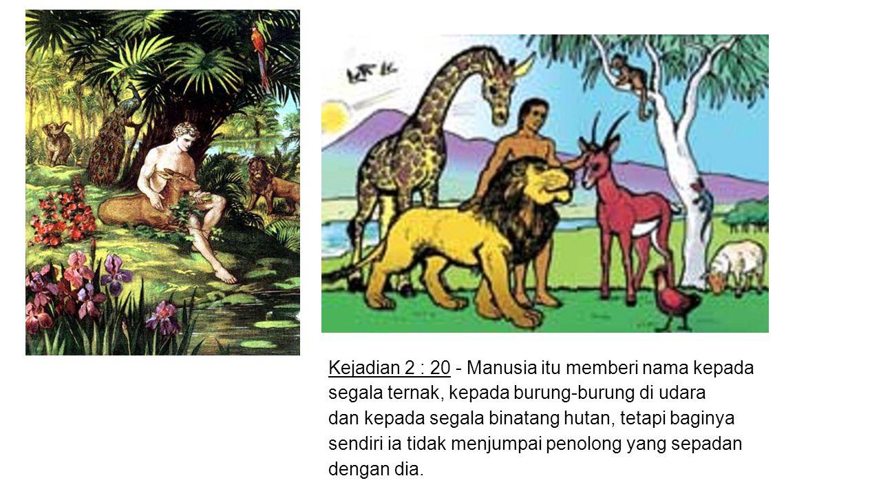 Kejadian 2 : 20 - Manusia itu memberi nama kepada segala ternak, kepada burung-burung di udara dan kepada segala binatang hutan, tetapi baginya sendir