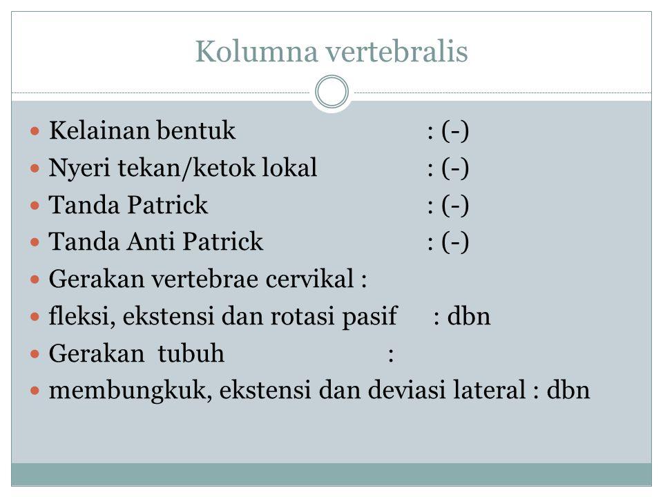 Kolumna vertebralis Kelainan bentuk: (-) Nyeri tekan/ketok lokal: (-) Tanda Patrick: (-) Tanda Anti Patrick: (-) Gerakan vertebrae cervikal: fleksi, ekstensi dan rotasi pasif : dbn Gerakan tubuh : membungkuk, ekstensi dan deviasi lateral : dbn