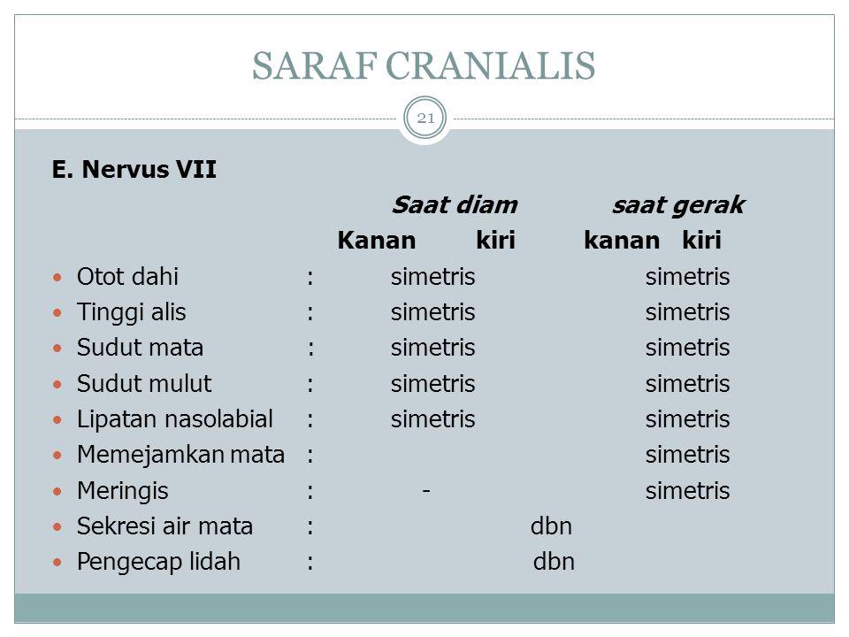 SARAF CRANIALIS 21 E.