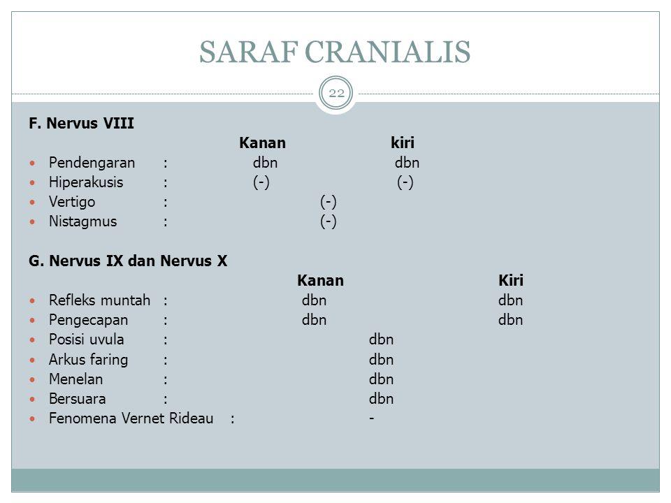 SARAF CRANIALIS 22 F.