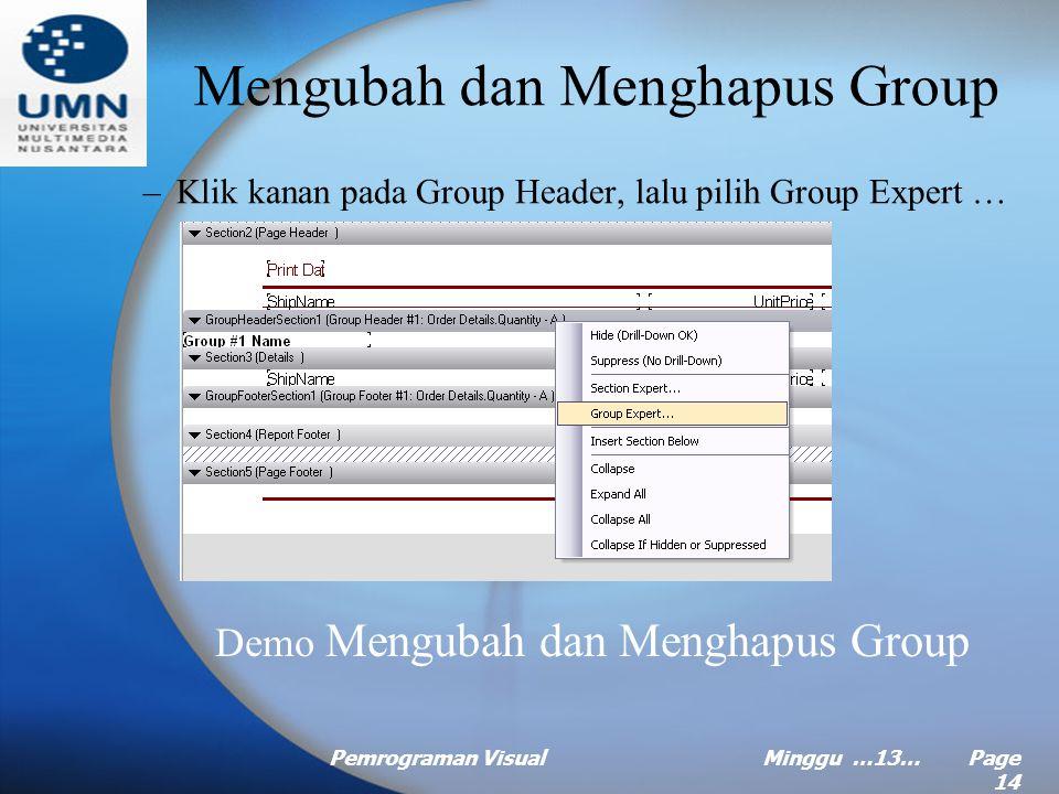 Pemrograman VisualMinggu …13… Page 13 Membuat Group (Continued …) –Pilih tab Option dilanjutkan dengan mencentang kotak Customize Group Name Field, ji
