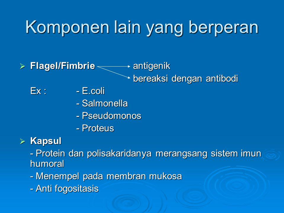 Komponen lain yang berperan  Flagel/Fimbrieantigenik bereaksi dengan antibodi Ex :- E.coli - Salmonella - Pseudomonos - Proteus  Kapsul - Protein dan polisakaridanya merangsang sistem imun humoral - Menempel pada membran mukosa - Anti fogositasis